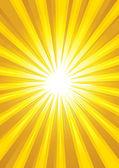Light Burst — Stock Vector