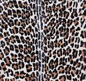 Polygonal Tiger Background — Stock Photo