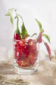 Spicy appetizer — Stock Photo