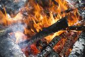 木材燃烧阶段 — 图库照片