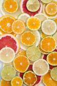 The colors of citrus fruits  — Foto de Stock