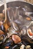 Морепродукты супа — Стоковое фото