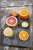 The colors of citrus fruits  — ストック写真