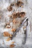 Notenkraker met noten — Stockfoto