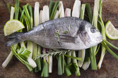 Raw sea bream — Stock Photo