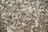 Marble slab — Stock Photo