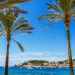 Port de Soller in Mallorca — Stock Photo #53797625