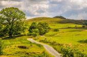 Rural scene in Cumbria — Stock Photo
