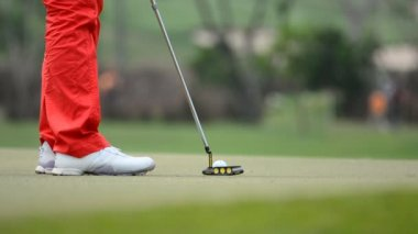Golfer was putting ball in hole. HD — Stock Video