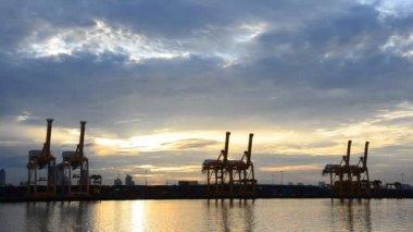 Crane bridge for container cargo. — Stock Video