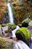 Waterfall in deep forest,  — Stock Photo