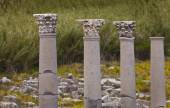 Classic Corinthian columns — Stock Photo