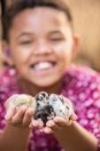 Joyful Kid Holding Pet Chicks — Stock Photo