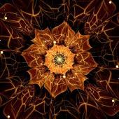 Orange fractal flower with violet details on petals, on white — Stok fotoğraf