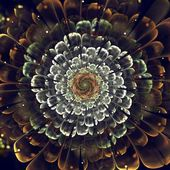 Oranje fractal bloem met violet besonderhede bloemblaadjes, op wit — Stockfoto