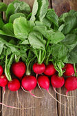 Heap of fresh radish on wooden background — Stock Photo