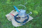 Garden tools on green grass background — Zdjęcie stockowe