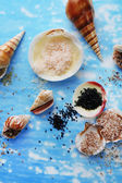 Different sea salt and shells, close up — Stock Photo