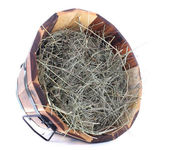 Big wooden basket full of dried grass isolated on white — Stock Photo