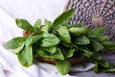 Fresh sorrel in round wicker basket on napkin closeup — Stock Photo