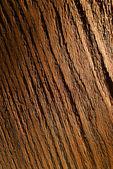 Fundo de textura de madeira — Fotografia Stock