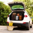Suitcases and bags in trunk of car ready to depart for holidays — Stock Photo #52100305