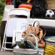 Suitcases and bags in trunk of car ready to depart for holidays — Stock Photo #52100311