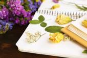 Composition with flowers and dry up plants on notebooks on table close up — Foto de Stock