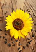 Sunflower with seeds on wooden background — Stock Photo