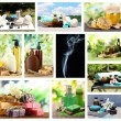 Spa remedies collage — Stock Photo