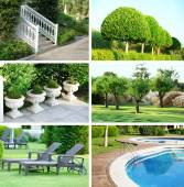 Collage of beautiful nature landscaping — Foto de Stock