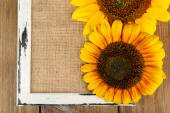 Beautiful sunflowers with frame on wooden background — Stock Photo