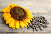 Sunflower and seeds on wooden background — Stock Photo