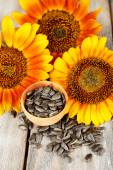 Sunflowers and seeds in bowl on wooden background — Stock Photo