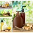 Spa remedies collage — Stock Photo #52335161