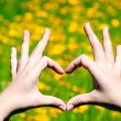 Young girl holding hands in heart shape framing on yellow flowers background — Stock Photo #52336109