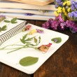 Composition with flowers and dry up plants on notebook on wooden background — Stock Photo #52339705