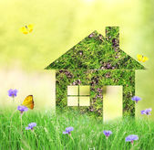 Dream house on nature background — Stock Photo