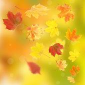 Vivid autumn leaves background — Stock Photo