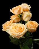 Ramo de rosas hermosas — Foto de Stock