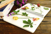 Composition with flowers and dry up plants on notebook on wooden background — Stock Photo