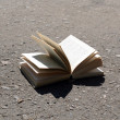 Open book on road outdoors — Stock Photo #52348035