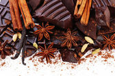 Cracked chocolate bar with spices on white background — Foto de Stock