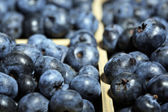 Tasty ripe blueberries in wooden crate, close up — Stock Photo