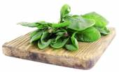 Tuft of fresh sorrel on wooden cutting board isolated on white — Stock Photo