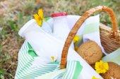 Tasty snack in basket on grassy background — Stock Photo