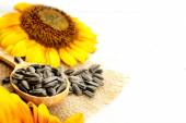 Sunflowers and seeds on wooden background — Stock Photo