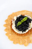 Black caviar with crispy bread on plate closeup — Stock fotografie