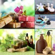 Spa remedies collage — Stock Photo #52791745