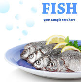 Fresh fishes with lemon and parsley — Stock Photo